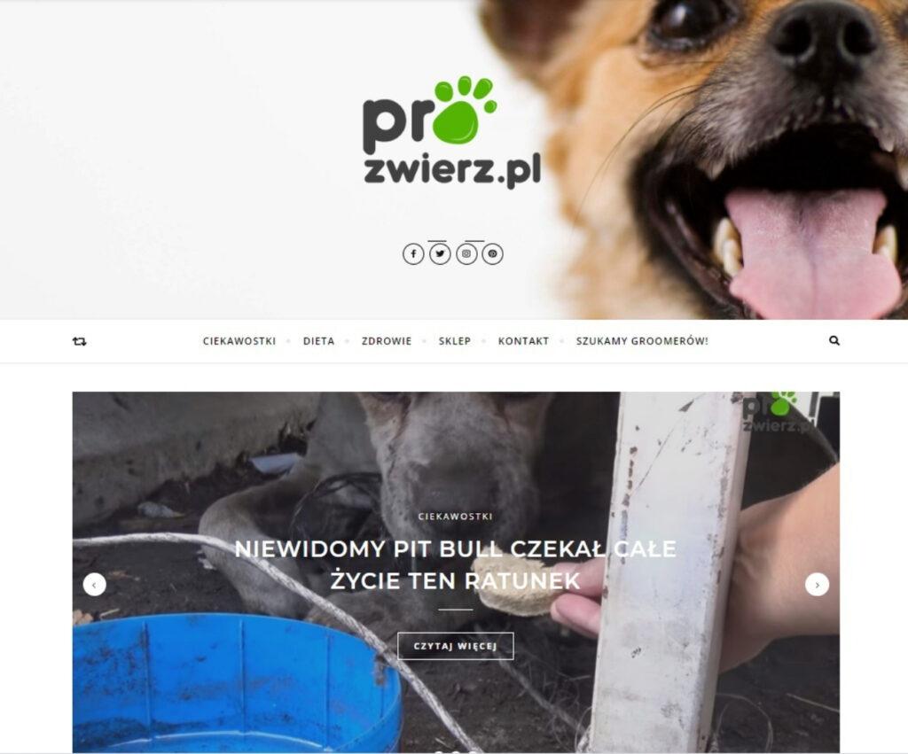 Agencja reklamowa - strona internetowa